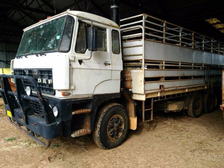 Double Deck Stock Crate - Daf 2800 ATI 6 Wheeler Truck for sale WA