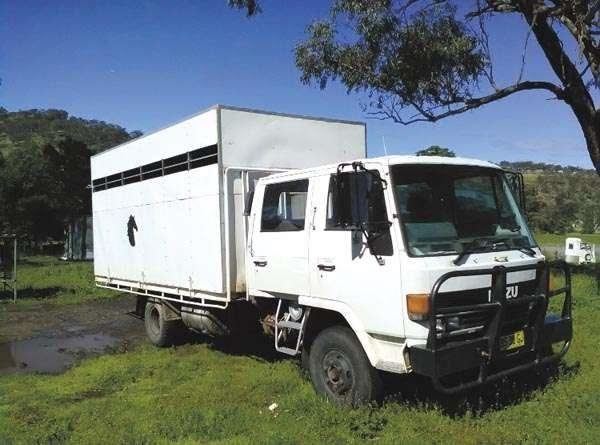 Horse Transport 1986 Isuzu FSR 500 5 Horse Truck for sale NSW
