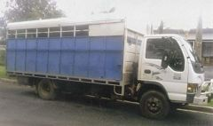 Horse Transport for sale Vic Isuzu 5 Horse Truck